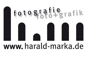 harald_Banner
